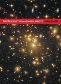 Fireflies in the Magnolia Grove